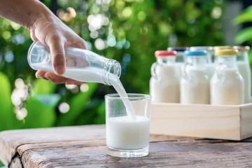 喝牛奶买电脑都要归入战略必需伊利联想双双遭吐槽