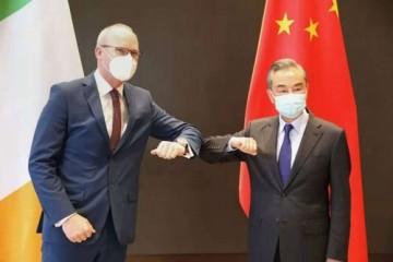 王毅同爱尔兰外交与国防部长科文尼举行会谈