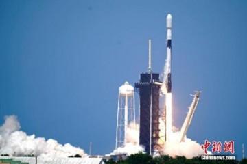 NASA将128只小鱿鱼送往太空将5000只缓步动物送入国际空间站